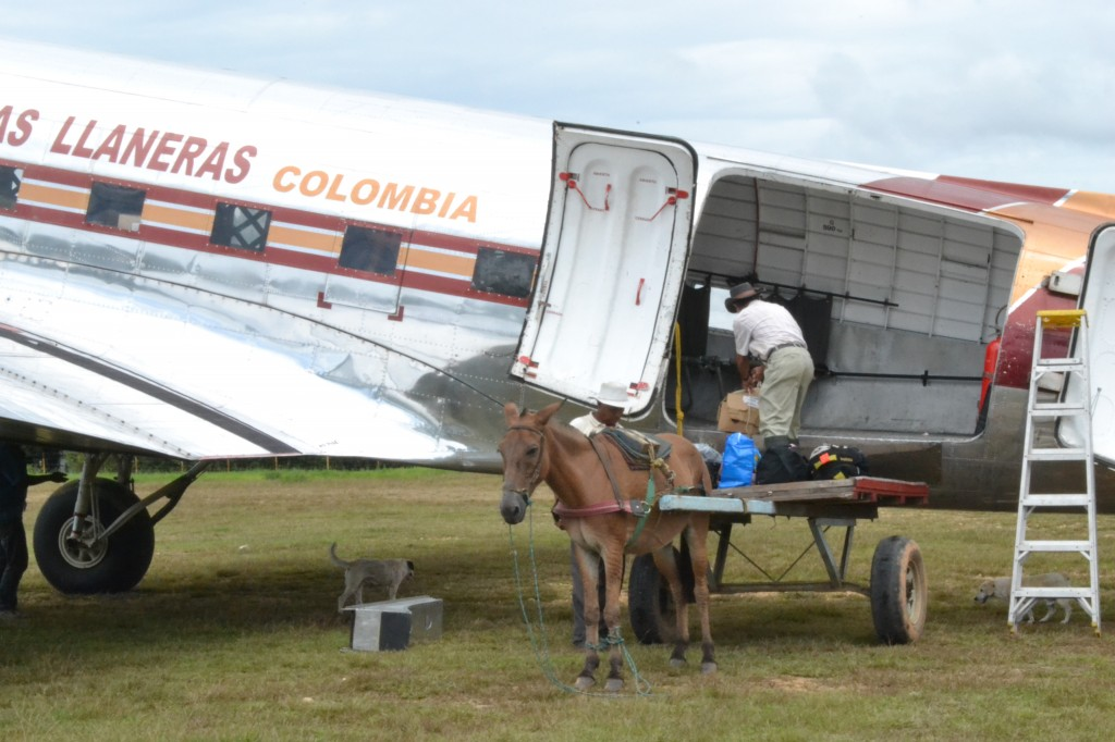 A medium-sized charter plane unloaded by a man onto a horse-drawn cart.