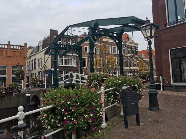 Bridge Leiden